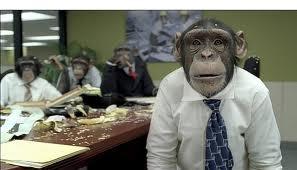 20110715-chimp3.jpg