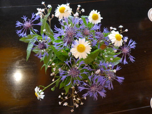 20150616-rsz_1rsz_flowers.jpg