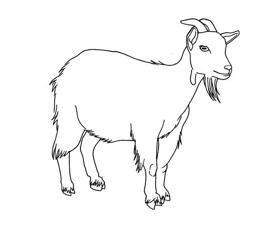 20151016-rsz_saboteur_goat1.jpg