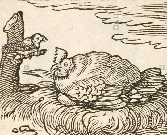 20170407-rsz_1the-hen-and-the-swallow-fable-by-aesop-circa-600bc-a-hen-sat-on-eggs-ey4dh8-1.jpg