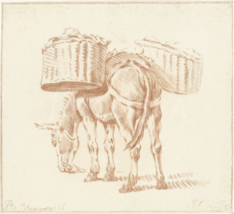 20180112-_rsz_11368923-loaded-donkey-jurriaan-cootwijck-1724-1798-1.jpg
